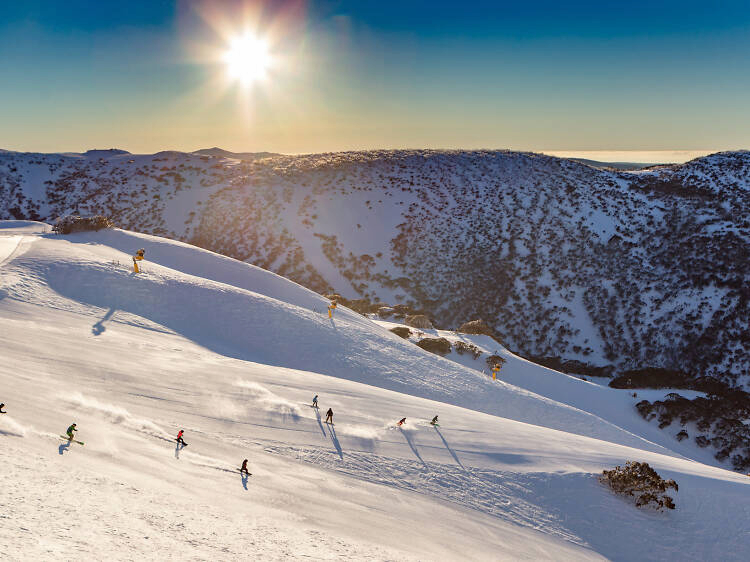 Mount Buller Snow Field